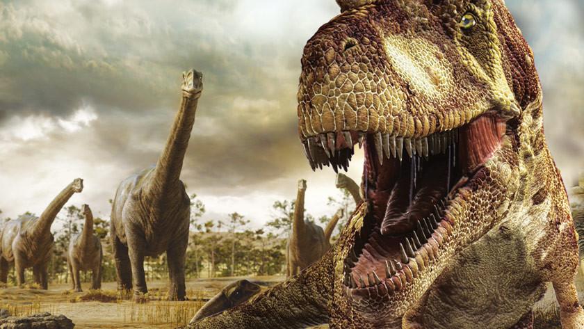 Der Dino-Planet in 3D – Blu-ray Disc