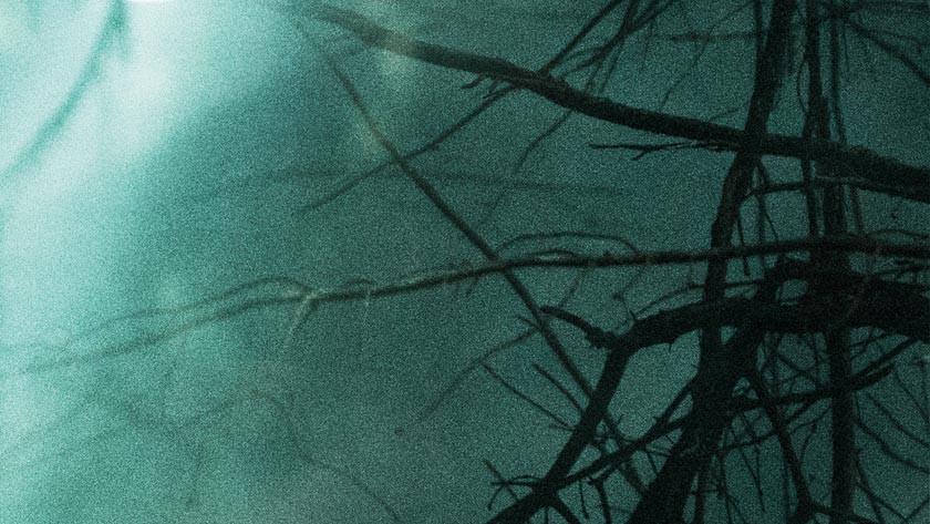 The Hallow – Blu-ray Disc / DVD